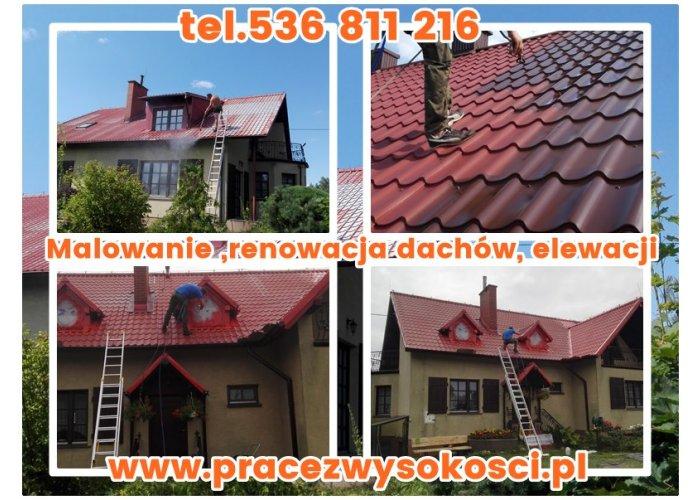 Malowanie ,renowacja dachów, elewacji. Czyszczenie kostki brukowej. Śląsk Małopo