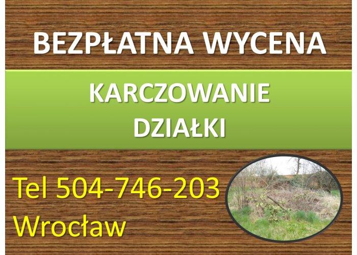 Karczowanie działki, cena, tel. 504-746-203, Wrocław. Koszenie zarośli, wysokiej