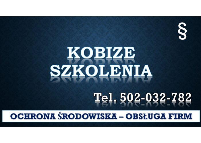 Szkolenie Raport do Kobize, tel. 504-746-203. Ćwiczenia, Warsztaty, cena , spraw