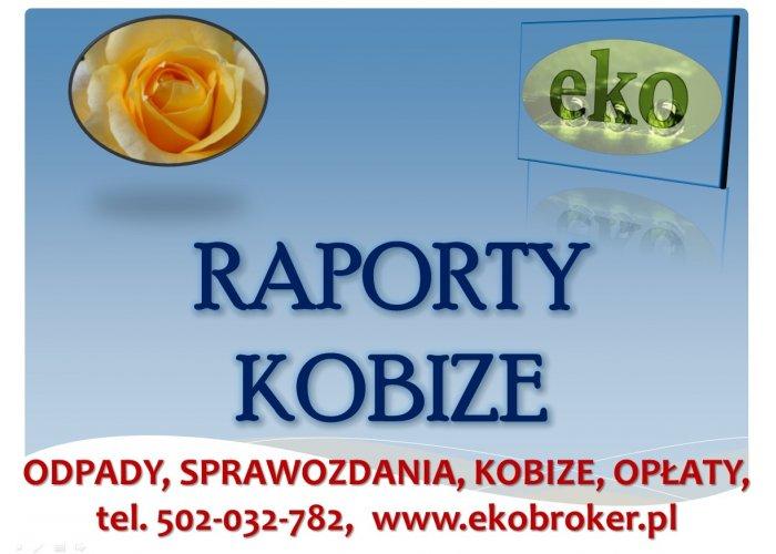 Kobize, tel 502-032-782, logowanie, przykłady, opłaty środowiskowe, sprawozdani