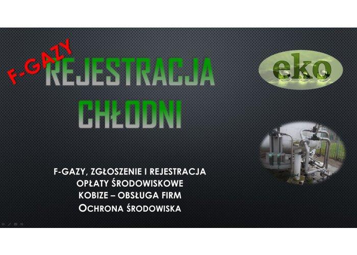 Centralny Rejestr Operatorów, tel. 502-032-782, Pompy ciepła, zgłoszenie, f-gaz