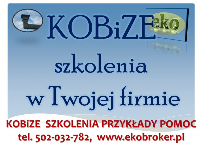 Szkolenie z raportu Kobize, tel 502032782, indywidualne, zamknięte, w siedzibie