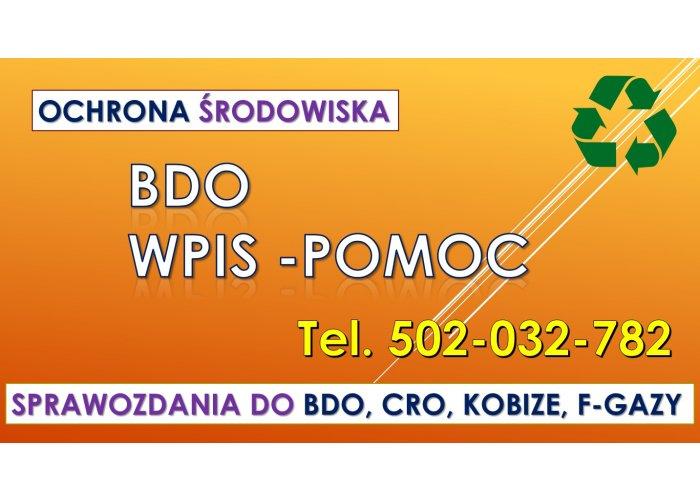 BDO, pomoc, tel. 504-746-203, wypełnienie wniosku. Obsługa firmy, cena. Wypełnia