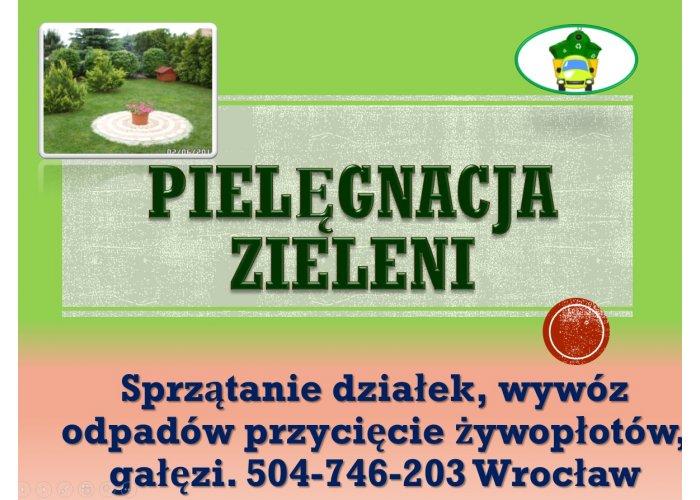 Porządkowanie i pielęgnacja działki, cena, tel. 504-746-203. Ogrodnik usługi