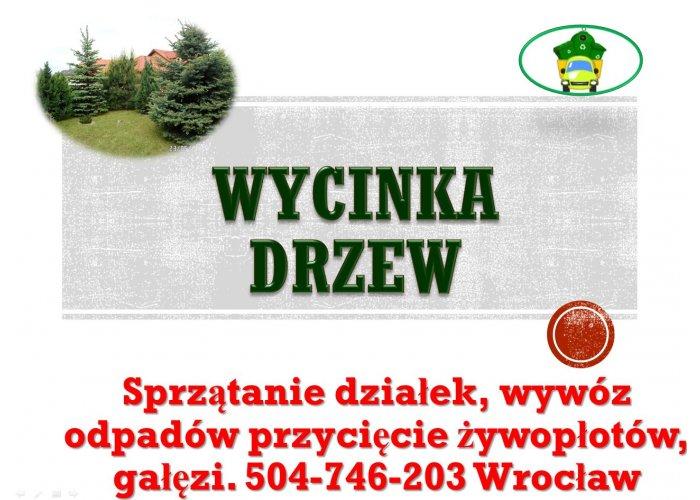 Wycinka drzewa, tel 504-746-203, Wrocław,  wycinanie drzew, gałęzi, cena, podcię