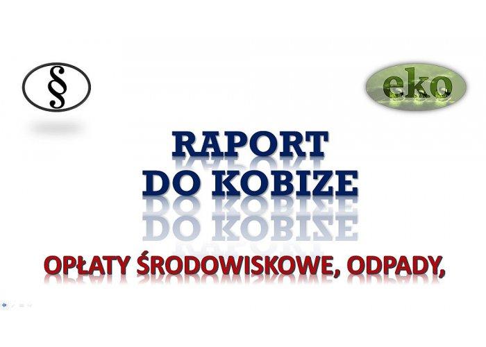Założenie konta w bazie Kobize, cena tel. 502-032-782. Wykonanie raportu. Obsłu