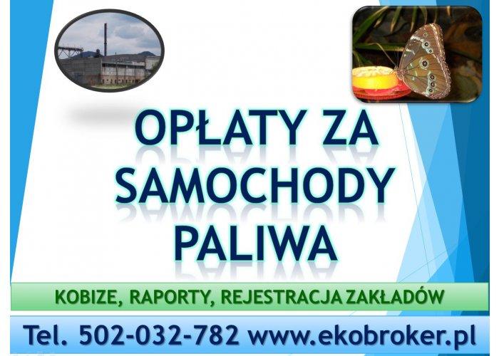 Opłaty środowiskowe, cena, tel 502-032-782, sprawozdanie, wykaz, obsługa firm.