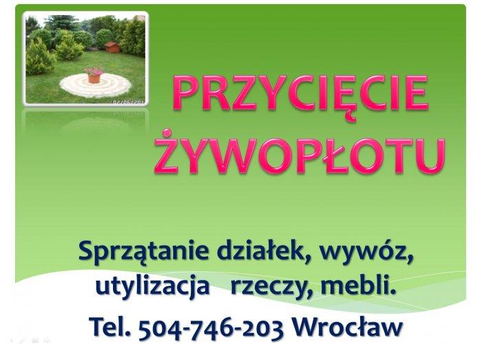 Sprzątanie ogródków działkowych, Wrocław. Tel. 504-746-203. Cennik usługi
